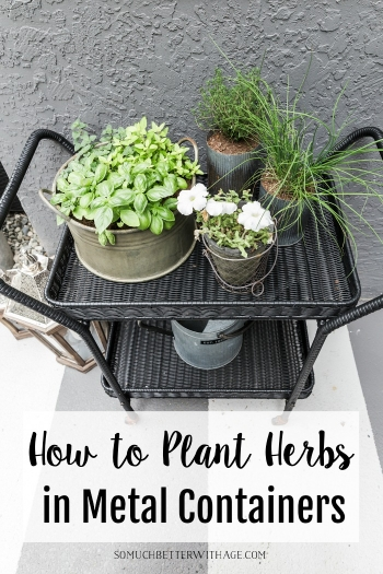 How to Plant Herbs in Metal Containers.