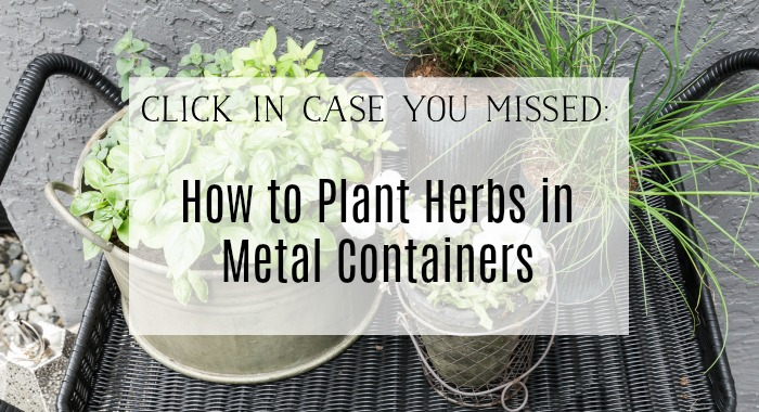 How to plant herbs in metal containers poster.
