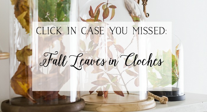 Fall Leaves in cloches graphic.