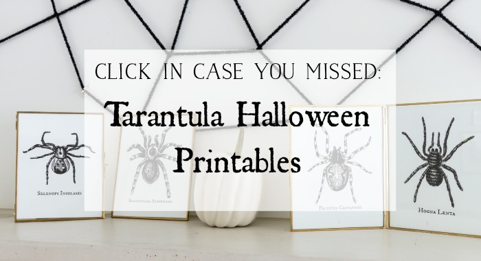 Tarantula Halloween Printables graphic.
