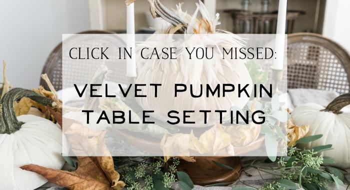 Velvet pumpkin table setting poster.