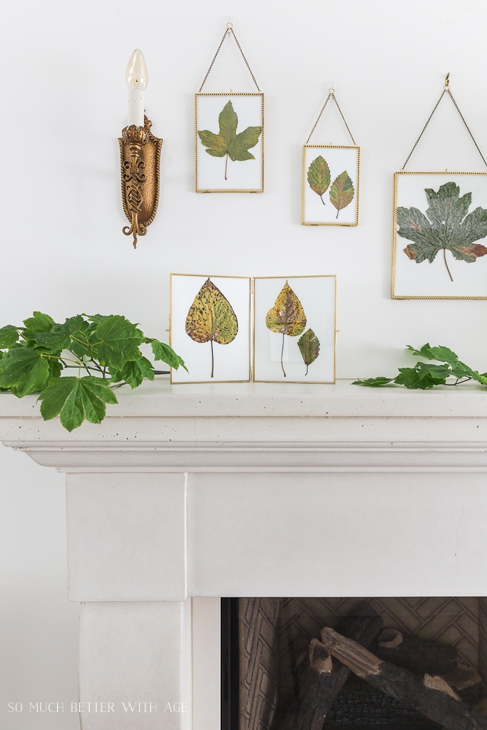 Bronze wall sconce above fireplace with leaves in frames.
