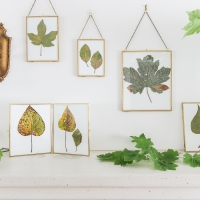 Pressed Fall Leaves Printable