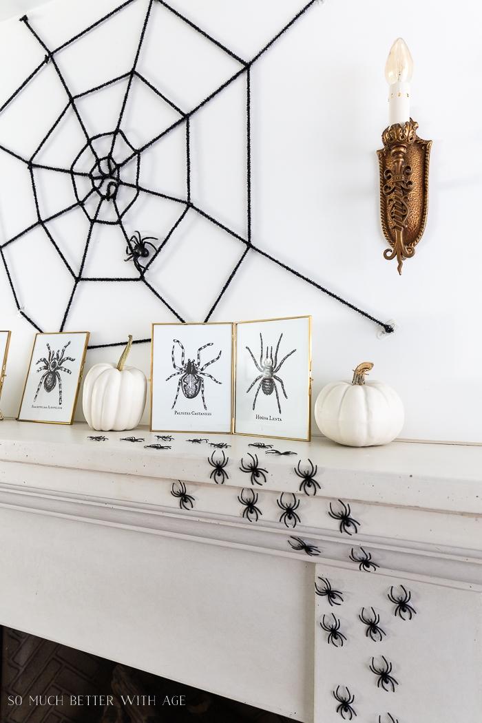 Halloween decorations of spiders.