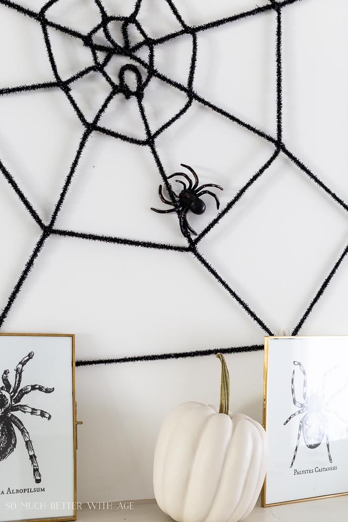 Big plastic spider on fake spider web.