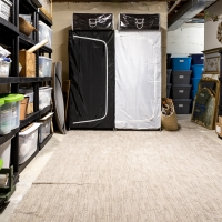 How to Declutter and Organize the Basement