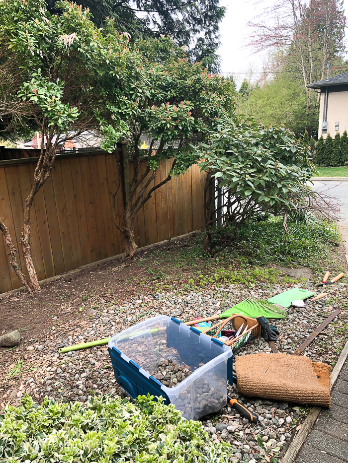 Pruning shrubs in front yard.