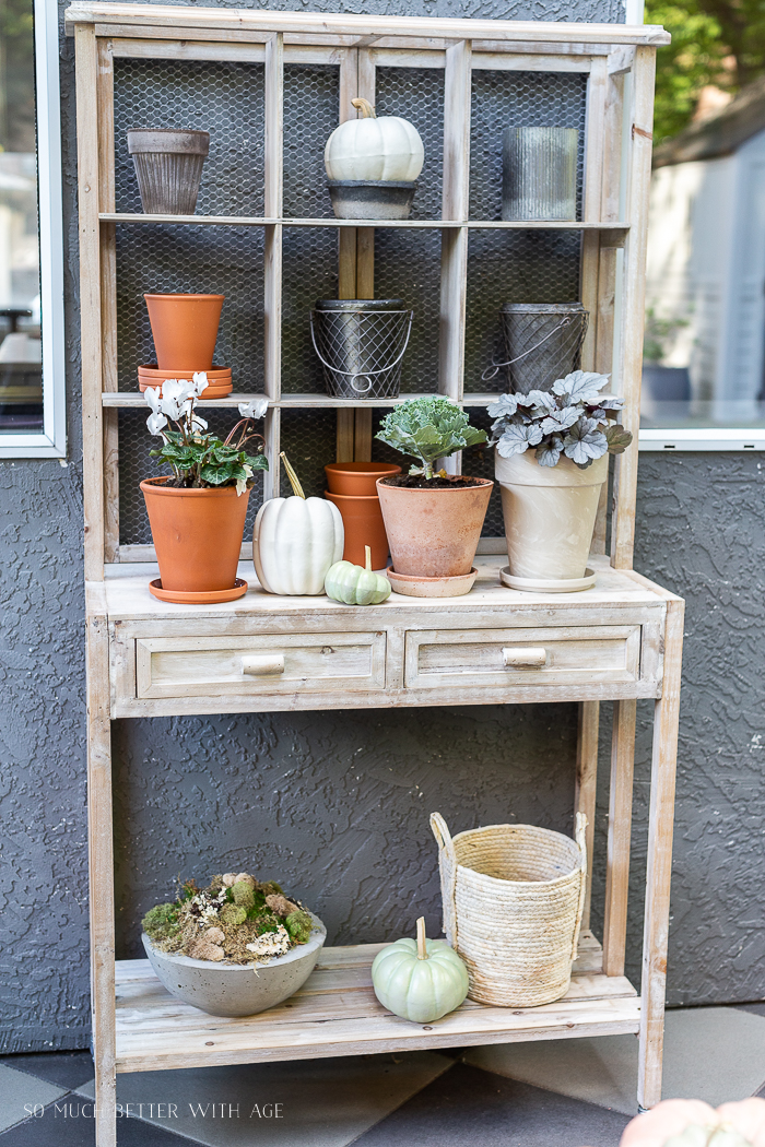 Potting bench with fall plants and pumpkins.